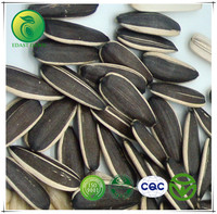 Agriculture Seeds Sunflower Seeds Wholesale Sunflower Seeds