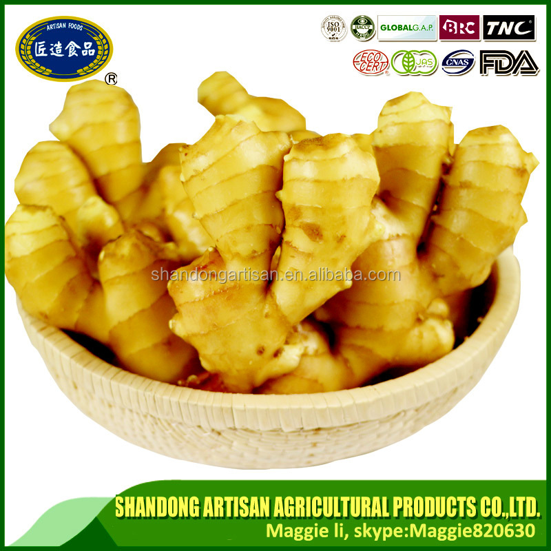 Factory produce ginger for world market factory direct