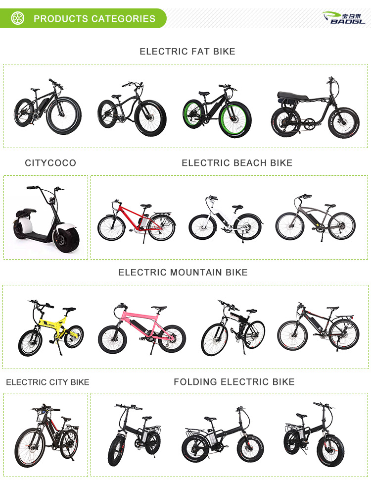"Eco Friendly Lithium Battery 20"" Fat Wheels Foldable Ebike 48V 500W"