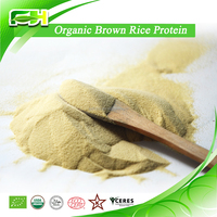 2015 New Certified Organic Brown Rice Protein