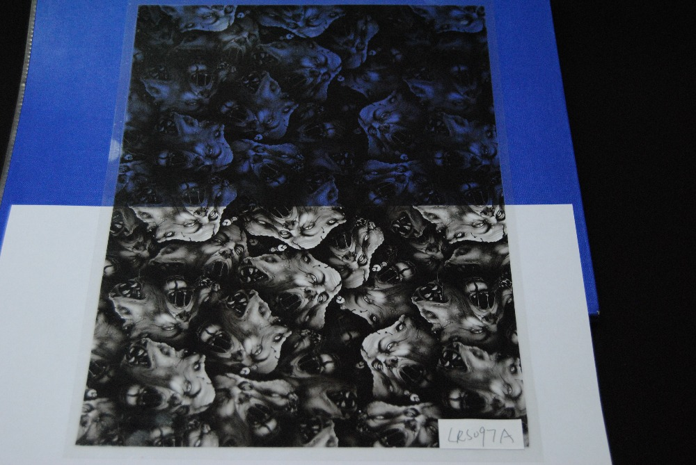 New coming factory outlet water transfer printing film, hydrographic film, aqua print from China LRS097A