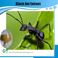 natural plant extract Ant Extract/Chinese black ants powder