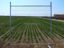 Australia Hot Dipped Galvanized Temporary fence with Clamp and Feet