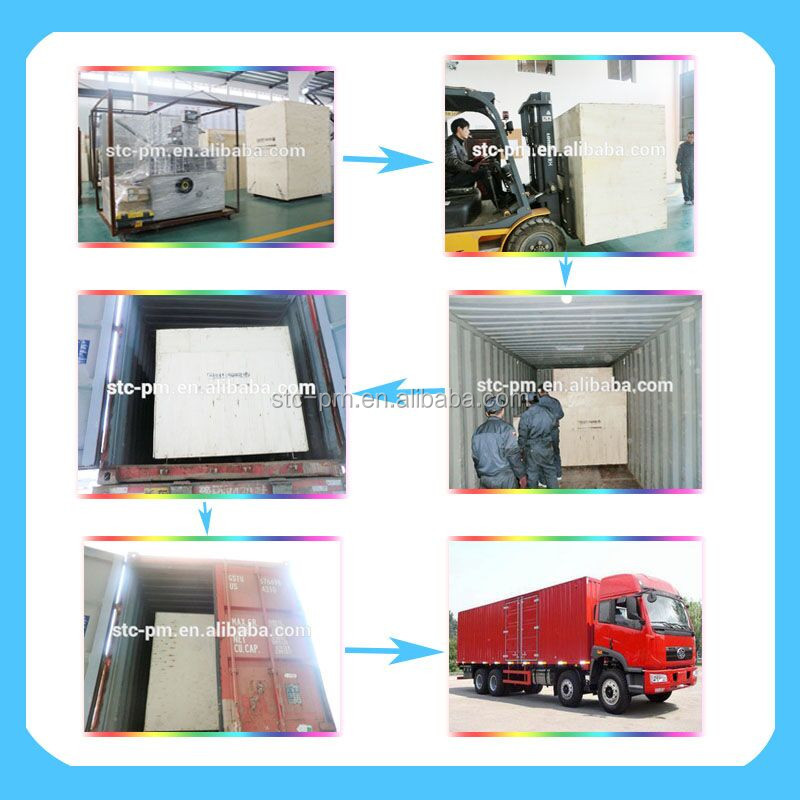 China Supplier New Type salt block press machine