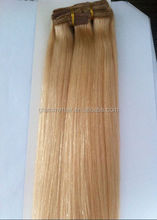 best human brazilian hair products catalog need wholesaler in miami