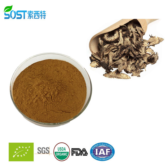 China supply Organic black cohosh root extract powder