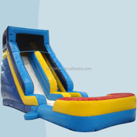Wholesale giant inflatable froze water slide with pool