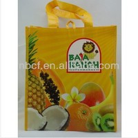 new product pp non woven shopping bag