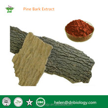 Best quality Natural Pine Bark Extract Proanthocyanidins 95%