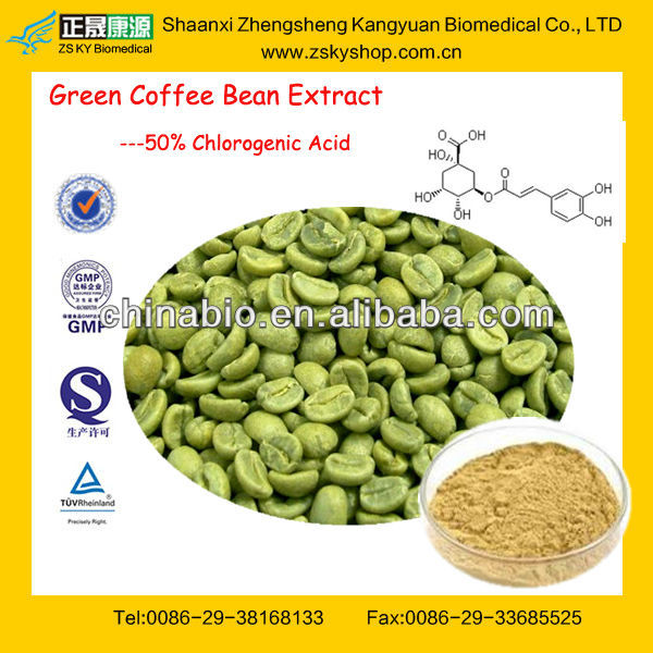 GMP Factory Supply Bulk Powder Green Coffee Bean Extract