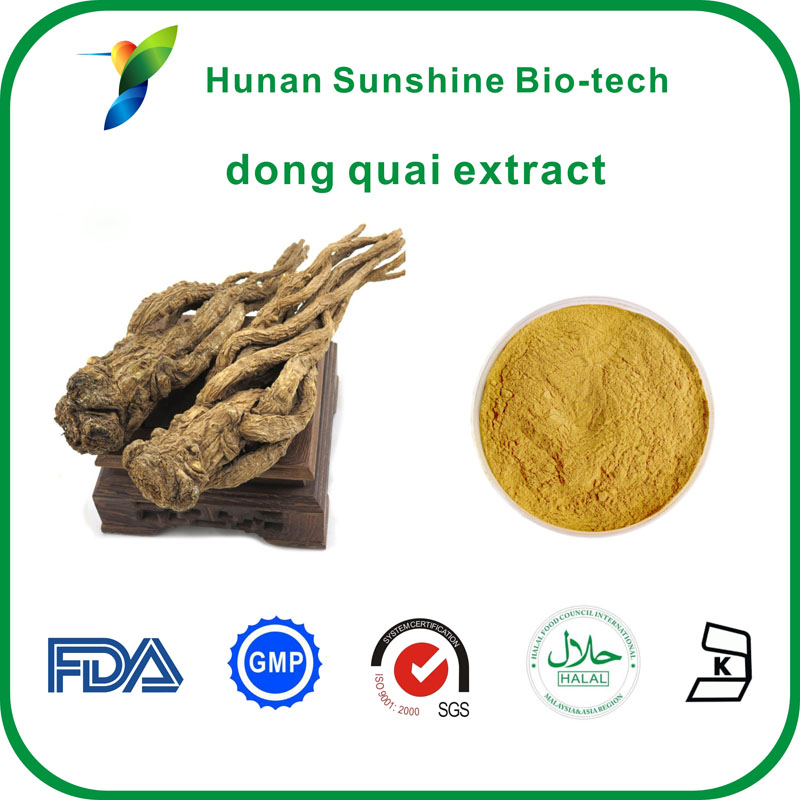 High quality 1% ligustilide HPLC 1% Ferulic Acid dong quai extract