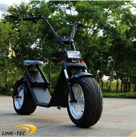 Newest design harley citycoco two big wheels 1200w motorbike fast speed electric detachable battery scooter