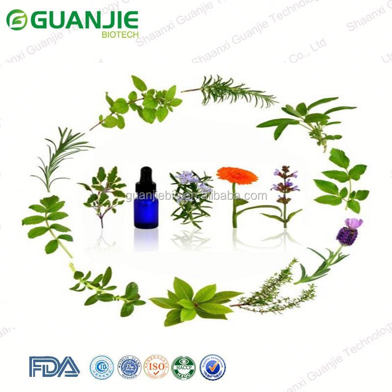 GMP Approved Natural black currant seed oil