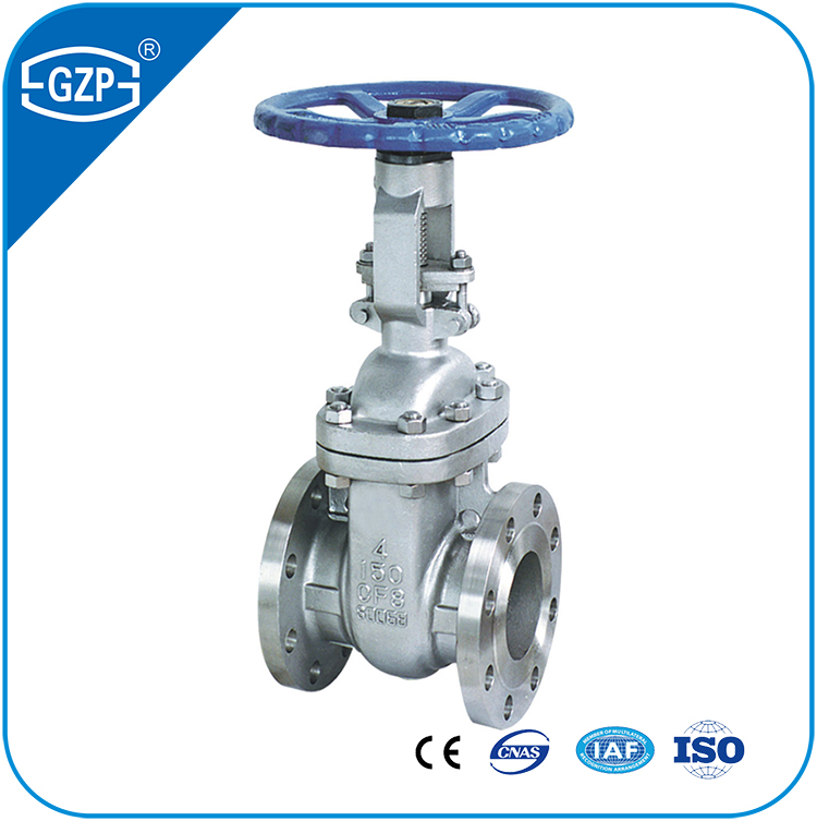 ANSI Standard ASTM A351 Stainless Steel 304 304L 316 316L CF3 CF3M CF8 CF8M Materials Flanged End Gate Valve