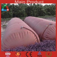 Flexible Plastic Red Mud Biogas Plant Produce 20kva Biogas to Electricity