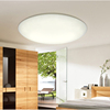 Oyster LED Ceiling Lamp High Brightness