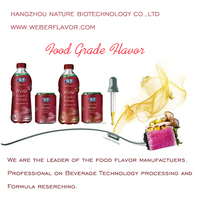 Food Beverage Additives Fruit Flavour Beverage