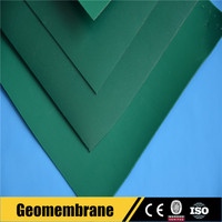 HDPE Geomembrane Green Agricultur Project Plastic Fish Pond