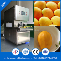 Automatic Stainless Steel Fruit Peeler /Apple skin remover Machine/mango core remover machine