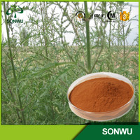 natural nettle seeds extract nettle powder 10:1 and 5:1 20:1
