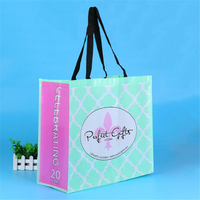 wholesale customized printing pp non woven bag with velcro closure