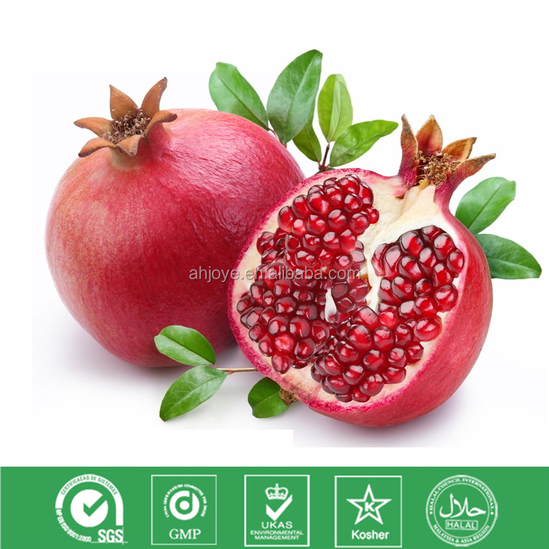 Hot Selling Pomegranate Extract 40% Punicalagin