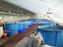 Tarpaulin Waterproof Flexible fish ponds , folding fish tanks