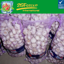 Fresh Chinese 3P Pure White Garlic In Good Sale New Crop 2017
