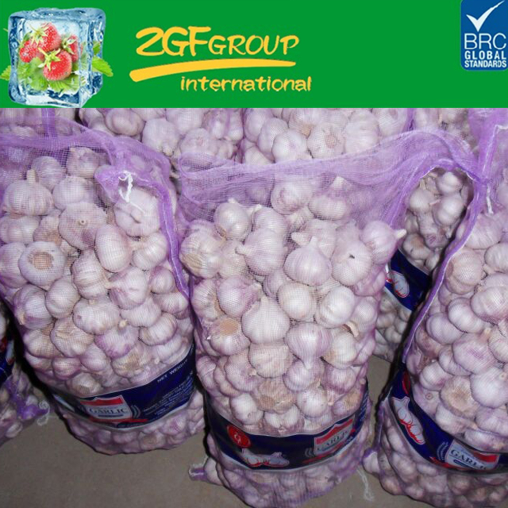 fresh chinese 3p pure white garlic in good sale new crop 2016
