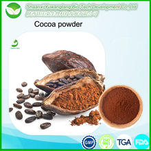 Free sample high quality Alkalized cocoa powder/ Natural cococa powder