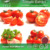 Chinese Manufacturer Natural Lycopene Price 5%6% CAS: 502-65-8