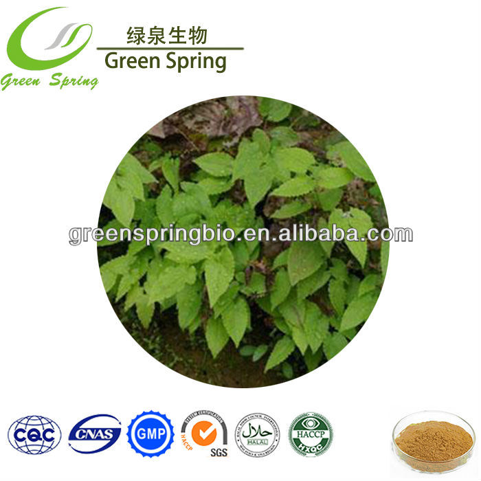 High Quality Icariin 20% Epimedium Extract / Horny goat weed powder