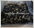 well packed for export black fungus