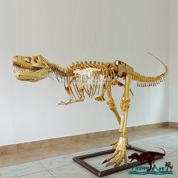 Fashionable showcase decorate golden dinosaur skeleton