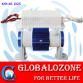 High voltage ozone transformer with ceramic ozone tubes 2G-10G,ozon cell