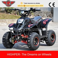 500W/800W Electric 4 Wheeler ATV for Adult (ATV001E)