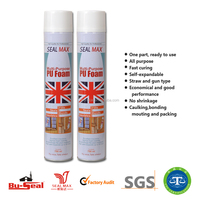 expanding pu foam sealant for doors and cracks