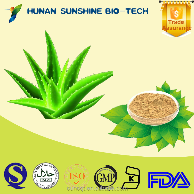 Skin Care Cosmetic Raw Material Organic Aloe Vera extract Powder
