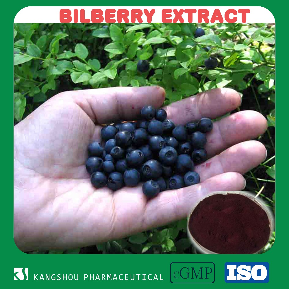 Natural High quality Anti-Oxidation Berry Fruit Bilberry Extract with Anthocyanidin 5-25%UV