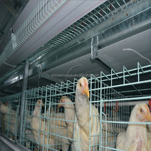 High efficiency chicken cage/chicken layer cage matched with automatic drink bowl
