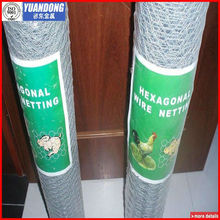 Hot Dipped Galvanized Hexagonal mesh/chicken mesh(Specialized Production)