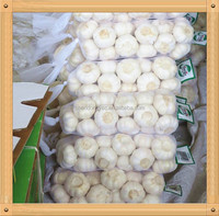 golden supplier china wholesale garlic with low price