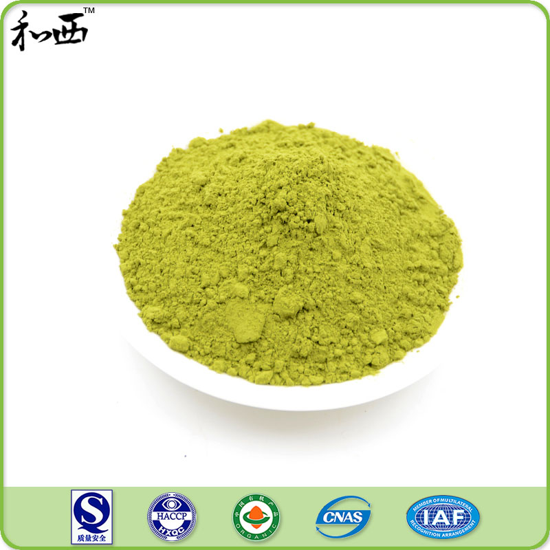 Ceremonial High Quality Matcha Green Tea Powder Extract