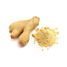 Factory supply oleoresin ginger extract in stock