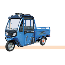 3 wheel heavy loading electric tricycle with 48V 800W Cargo Trike electric vehicles