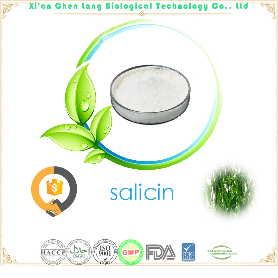 2018 Hot New Products With Best Price White Willow Bark Extract Salicin