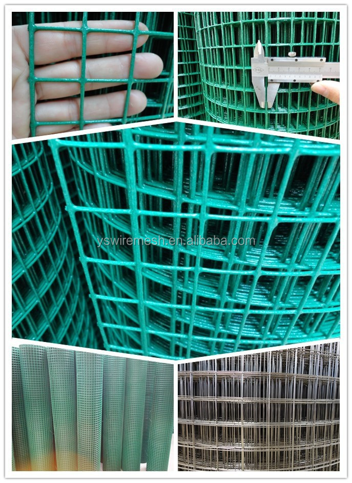 pvc coated green color 1x1 welded wire mesh