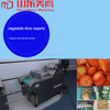 Industrial Washer Machine Type and CE Certification laundry washing equipment /fruit processing line