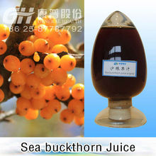 100% Organic Sea Buckthorn Juice / Concentrate ( with FDA,IMO,CERES,,KOSHER,HACCP,GMP)