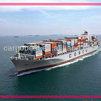 Sea Transport And Customs Clearance Service